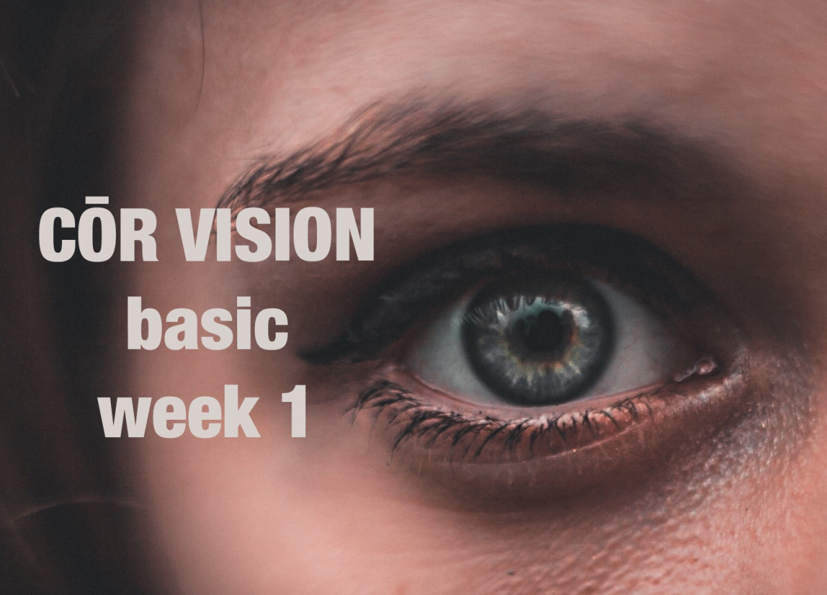 CŌR VISION Part 1 Basic Training